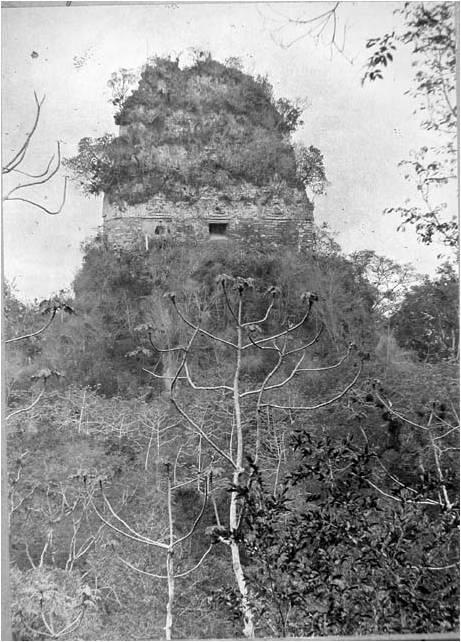 Tikal6