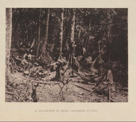 """Campamento de mozos indígenas en Tikal, contratados por Maudslay para la limpieza del sitio. En sus notas de campo resalta las condiciones en que se """"contrataba"""" a estos hombres, puestos en la cárcel por los Jefes Políticos para obligarlos a trabajar para el arqueólogo."""