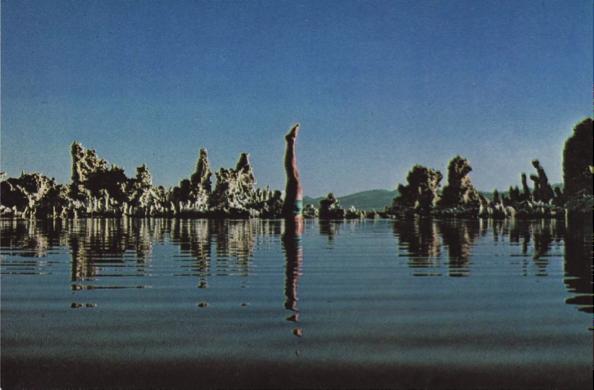 Las imágenes del interior, del grupo creativo Hipgnosis, complementan el tono del disco, llevando imágenes de locura y soledad para acompañar las canciones, expresando gráficamente el cuidado que el grupo ponía en todos los detalles de producción de sus discos. Arriba, fotografía tomada en Mono Lake, California, al este del Parque Nacional Yosemite.