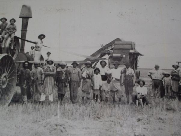 El mayor número de migrantes tenía como destino las grandes estancias o haciendas del campo argentino, que se expandía al oeste y al sur. En la imagen, trabajadores frente a una segadora mecánica en el campo.